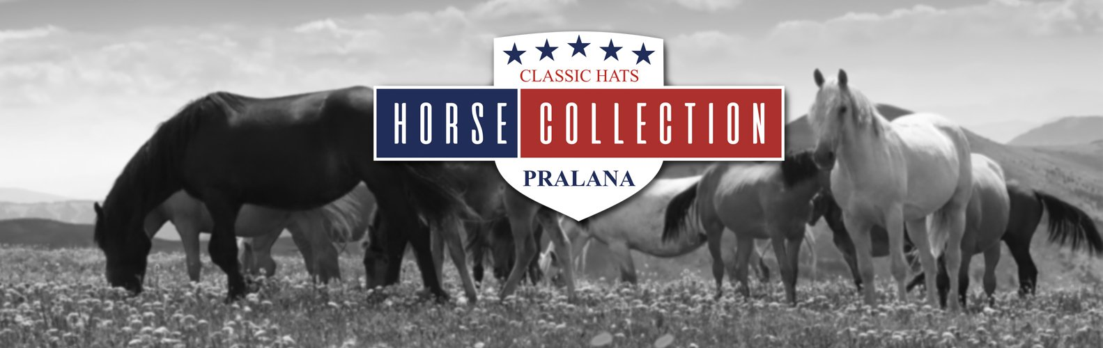 Horse Collection!