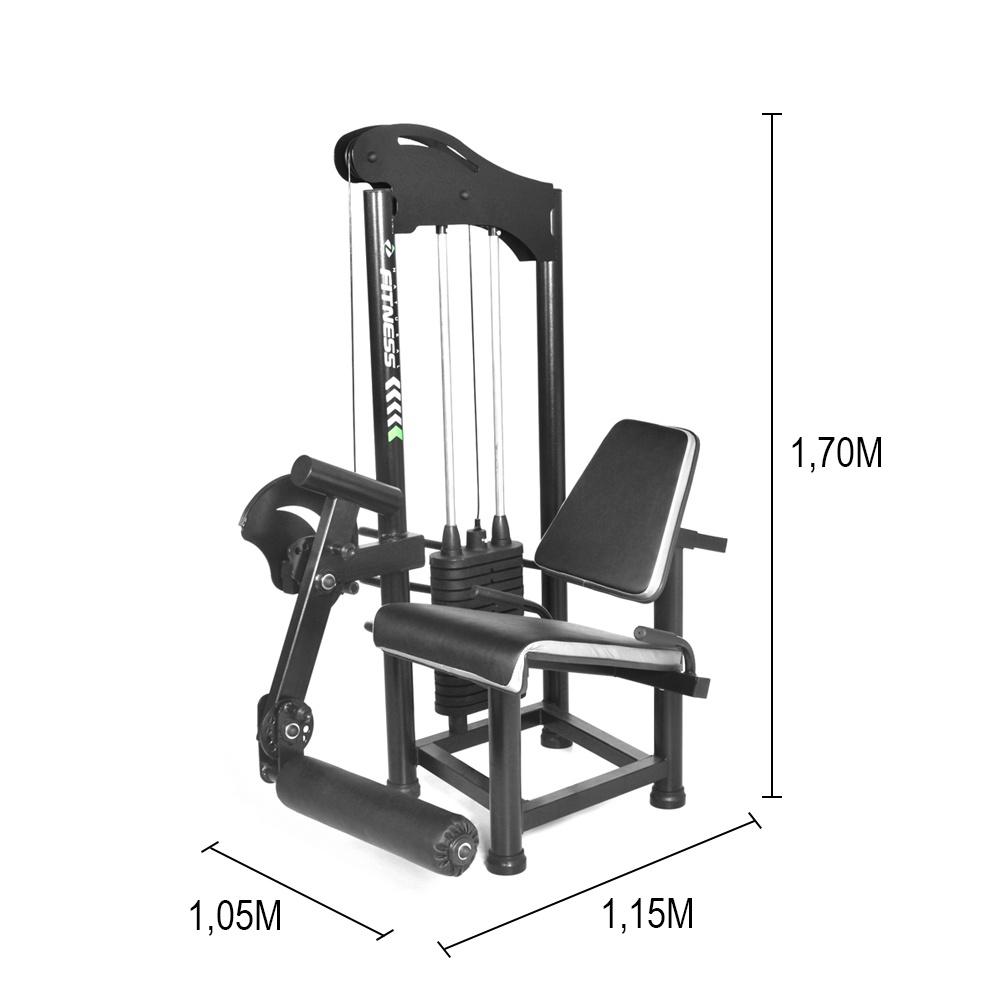 Aparelho Cadeira Extensora Sentada para Musculação - Natrus
