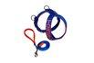 Peitoral Amorosso® Personalizado (azul e laranja) + Guia de Passeio
