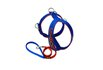 Peitoral Amorosso® Personalizado (azul e laranja) + Guia Curta