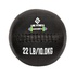 Wall Ball Em Couro 22lb/10kg