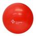 Bola Suiça para Pilates 55cm + Bomba de Ar