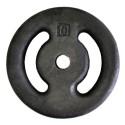 Anilha de Ferro Pintada 10kg Vazada