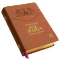 Bíblia Sagrada - Edição De Estudos