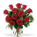 Rosas para o Ambiente