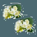 Porta Guardanapo mini orquídea branca