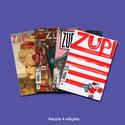 Pacote 4 Edições Revista Zupi