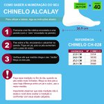 CHINELO FEMININO ALCALAY
