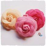 Rosas Ternura