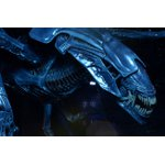Aliens: Xenomorph Alien Queen Deluxe Action Figure