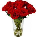 10 Rosas Colombianas