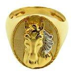 Anel Masculino de Cavalo em Ouro 18K Oval
