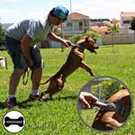 Coleira Para Cachorro Poderosso (cinza e preto)