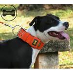 Coleira Para Cachorro Amorosso (laranja e preto)