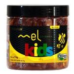 Mel Nobreflora Kids Orgânico 250 sachês x 4g