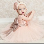 Vestido Princess Rose