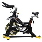 Bicicleta de Spinning Oneal TP 8000