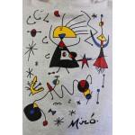 Camiseta Miró Gelo