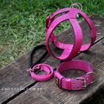 Kit Tradicional Amorosso (Peitoral + Coleira + Guia) (Pink e preto)
