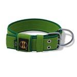 Coleira Para Cachorro Amorosso Slim (verde claro)