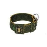 Coleira Amorosso® Fatto a Mano (Verde Militar e Amarelo)
