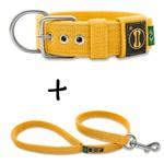 Coleira Para Cachorro Fit + Guia / Amarelo
