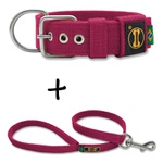 Coleira Para Cachorro Fit + Guia / Pink