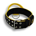 Coleira Para Cachorro Com Alça - Personalizada (preto e amarelo) + Guia Slim 80cm