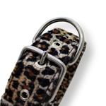 Coleira Para Cachorro Fit Leopard