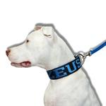 Coleira Para Cachorro Personalizada + Guia Curta 80cm Preto e Azul
