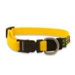 Little Collar (Coleira Pequena) Amarelo