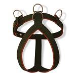 Peitoral Amorosso® Tradicional (Verde Militar e Laranja)
