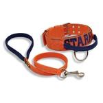 Coleira Para Cachorro Com Alça - Personalizada (laranja e azul marinho) + Guia 80cm