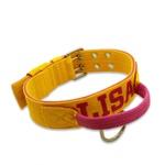 Coleira Poderosso Personalizada (Amarelo e Pink)