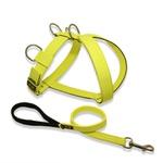 Peitoral Tradicional Amorosso® (amarelo flúor e preto) + Guia Curta 80cm