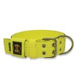 Coleira Para Cachorro Amorosso + Guia Curta 80cm (Amarelo Flúor e Preto)