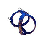 Peitoral Amorosso® Personalizado (azul e laranja)