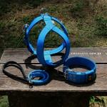 Kit Tradicional Amorosso (azul e preto) (Peitoral + Coleira + Guia)