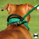 Coleira Para Cachorro Poderosso (verde e preto)