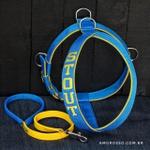 Peitoral Amorosso® Personalizado (azul e amarelo) + Guia Curta 80cm
