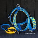 Kit Personalizado Amorosso (Peitoral + Coleira + Guia) azul e amarelo