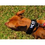 Coleira Para Cachorro Com Alça Personalizada (total black)