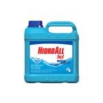 Algicida de Manutenção HCL - 5 litros
