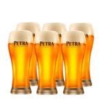 Copo Cerveja Petra Puro Malte