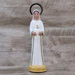 Imagem Durata - Nossa Senhora Grávida 20 cm