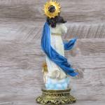 Imagem Resina - Nossa Senhora Imaculada Conceição 20 cm