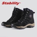 Stability Evolotuin Preto