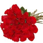24 Rosas Colombianas
