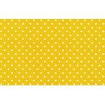 Viés Bolinha Marilda 24mm - Amarelo (rolo com 20 metros)