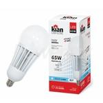 Lampada Industrial Led Globe E27 65W BIV Kian